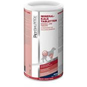 PetBalance MineralKalk Tabletten - 550g